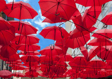 Lots of red umbrellas coloring the sky in the city street Belgrade Royalty Free Stock Photo