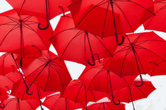 Lots of red umbrellas  on white Stock Photo