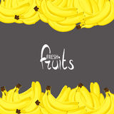 Lots of ripe bananas Stock Image