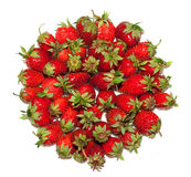 Lots of ripe, fresh, juicy, strawberries are laid in circle, isolated on white/ Stock Photo