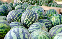 Lots of ripe watermelon. Is a large pile Stock Photo