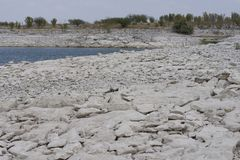 Drying lake with low shoreline. Lots of rocks showing from Amistad reservoir drying. The shoreline has dropped alot royalty free stock photography