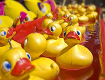 Lots of rubber ducks Royalty Free Stock Photography