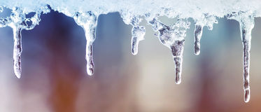 Lots of shiny cold icicles of clear ice hanging in the spring day Royalty Free Stock Image