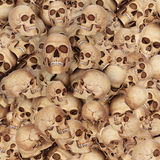 Lots of Skeleton skulls Royalty Free Stock Photography