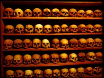 Lots of Skulls background wallpaper fine art prints amazing royalty free stock photo