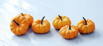 pile small cute pumpkins stock images 51 photos