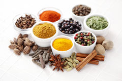 Lots of spices Stock Photography