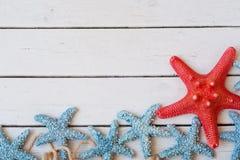 Lots Starfish, die auf einem Sandhintergrund, Ferienhintergrund sitzen stockbild