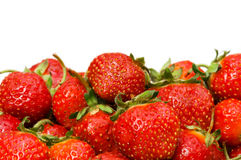 Lots of strawberries arranged a Stock Photography