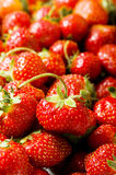 Lots of strawberries arranged Stock Photo