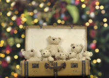 Lots of teddy bears in an old vintage suitcase royalty free stock photos