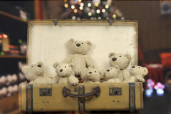 Lots of teddy bears in an old vintage suitcase Stock Photos