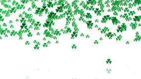 Lots of Tiny Green Clovers In Up Stock Photo