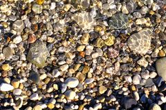 Lots of various pebbles under water stock image