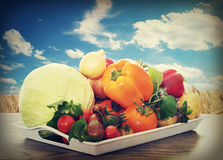 Lots of vegetables Royalty Free Stock Image