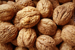 Lots of walnuts. Walnuts texture stock photos