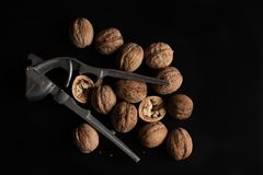Lots of walnuts on black background and Nutcracker. Halves of nuts.  royalty free stock images