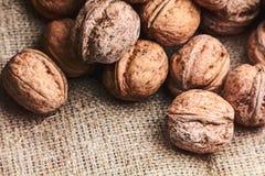 Walnuts on craft loft cloth. Lots of walnuts on craft loft cloth Stock Image