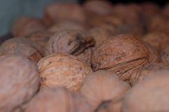 Lots of walnuts on the shelf stock photos