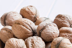 Lots of walnuts on a white background Royalty Free Stock Photography