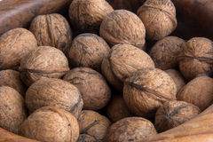 Lots of walnuts Royalty Free Stock Photo