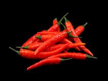 Lots of wet red chili peppers Royalty Free Stock Photography