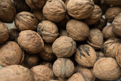 Lots of whole unpeeled walnuts Stock Image