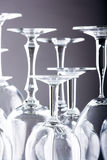 Lots of wine glasses Royalty Free Stock Photo