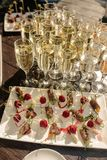 Lots of wine glasses during some festive event and berries with cheese. Lots of wine glasses during some festive event royalty free stock images