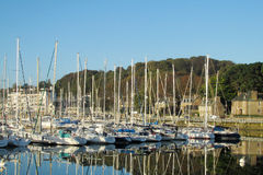 Lots of yacht parked in Perros Guirec bay Stock Photo