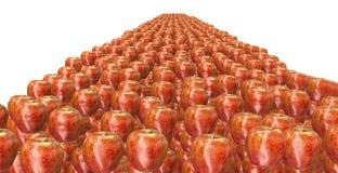 Lott av äpplen Royaltyfri Foto