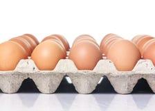 Lott av bruna ägg i rad på ett magasin royaltyfria foton
