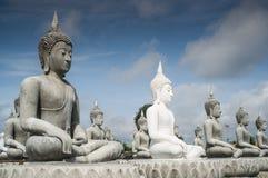Lott av Buddhastatyn Arkivfoton