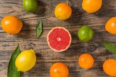 Lott av citrusfrukter på svart träbakgrund royaltyfri fotografi