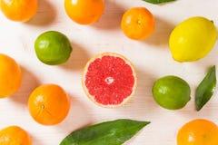 Lott av citrusfrukter på vit träbakgrund arkivbilder