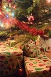 Lott av den packade julgåvan under julgranen Fotografering för Bildbyråer