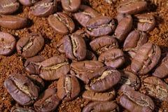 Lott av enorma kaffebönor och pulver Arkivbild