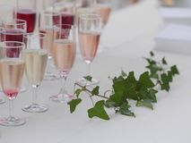 Lott av exponeringsglas med champagne Royaltyfri Bild