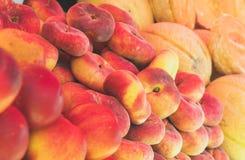 Lott av mogna persikor royaltyfri bild