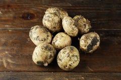 Lott av unga potatisar Arkivbilder