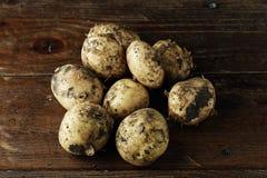 Lott av unga potatisar Royaltyfria Bilder