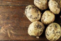 Lott av unga potatisar Arkivfoto