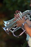 Lotta Brass. Row of trumpet players stock image
