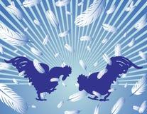 Lotta del gallo Immagine Stock