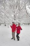 Lotta della palla della neve Fotografia Stock
