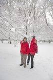 Lotta della palla della neve Fotografie Stock