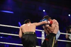 Lotta di pugilato del posto in palazzo dello sport, Kiev Fotografia Stock Libera da Diritti