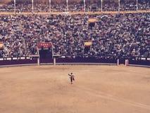 Lotta di toro di Madrid Spagna Las Vendas Fotografia Stock Libera da Diritti