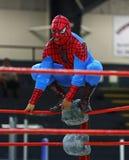 Lottatore lottante del costume di Uomo Ragno Fotografia Stock Libera da Diritti